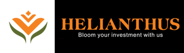 become a good digital marketer helianthus sri lanka